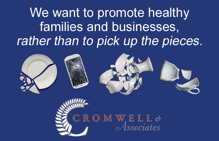 promote healthy families rather than pick up pieces